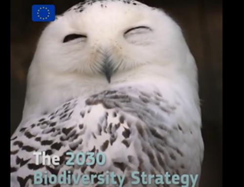 Укрепване на устойчивостта на Европа: спиране на загубата на биологично разнообразие и изграждане на здравословна и устойчива продоволствена система