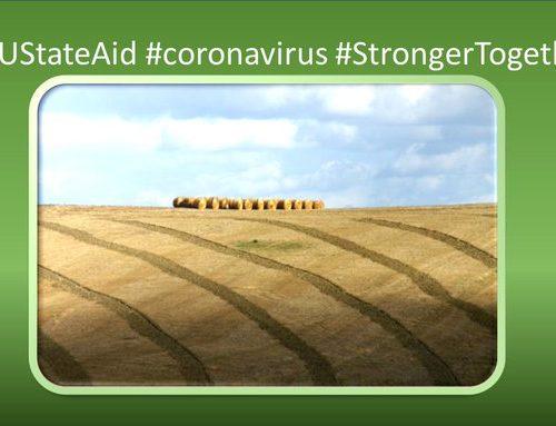 ЕК одобри българска схема в размер на 29 млн. евро в подкрепа на земеделски стопани